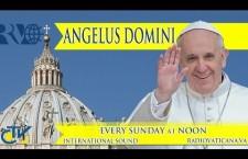 REPLAY TV – Angelus con Papa Francesco Domenica 2 febbraio 2014