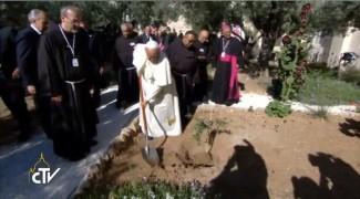 Getsemani5