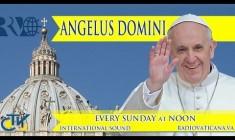 Angelus con Papa Francesco Domenica 14 settembre 2014 – REPLAY TV