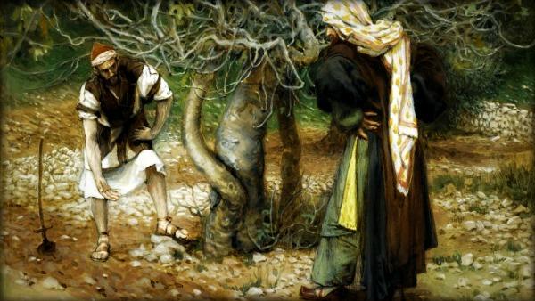 Commento al Vangelo di oggi: Perché deve sfruttare il terreno?