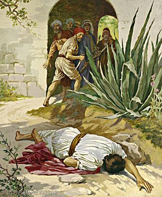 Mt 21,33-43 Darà in affitto la vigna ad altri contadini.