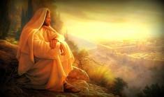 Vangelo (23 novembre) Se avessi compreso quello che porta alla pace!