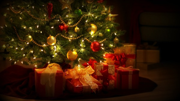 Qual è la storia dell'Albero di Natale?