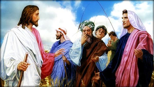 Gesù grano sabato
