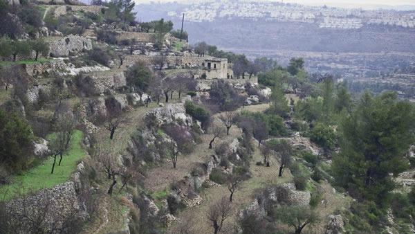 Il Coordinamento Terra Santa esamina il caso Cremisan