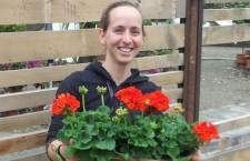 Bolzano, per san Valentino iniziativa caritas e floricoltori