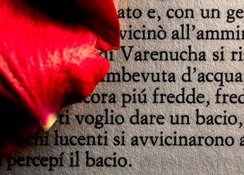 Words-28-Romanzo