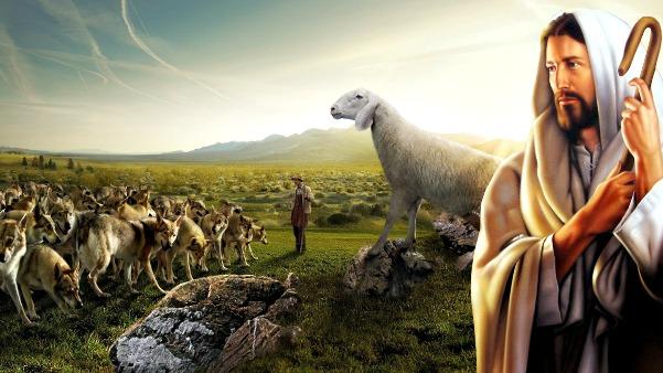 #Vangelo: Ecco, vi mando come agnelli in mezzo a lupi