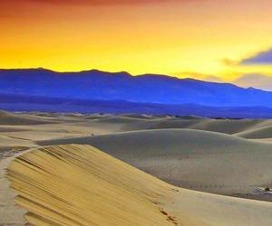 Sabato 7 febbraio – Se ci sei tu, il deserto è abitato