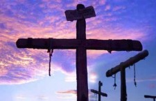 Diocesi Savona-Noli: l'albero della Pasqua, i frutti del Risorto