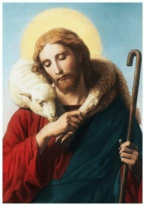 #Vangelo: Il buon pastore dà la propria vita per le pecore.