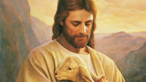 #Vangelo: Io sono la porta delle pecore.