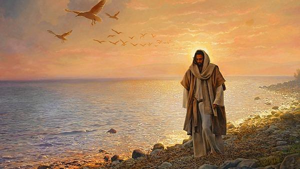 #Vangelo: Il vento soffia dove vuole e ne senti la voce, ma non sai da dove viene né dove va.