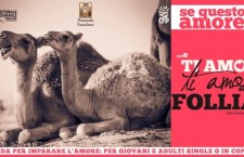 Perugia, un nuovo ciclo di 'Se questo è amore'