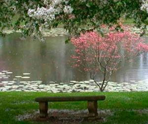 Domenica 12 aprile - Sarebbe una beatitudine bellissima