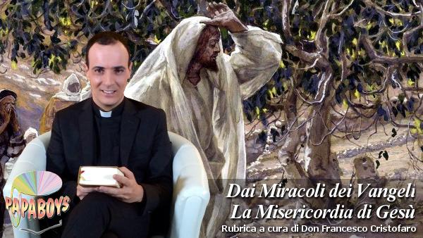 Dai Miracoli dei Vangeli la Misericordia di Gesù. Miracolo della pianta di fico.