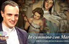 In cammino con Maria. Tu, Avvocata dei peccatori (21 maggio)