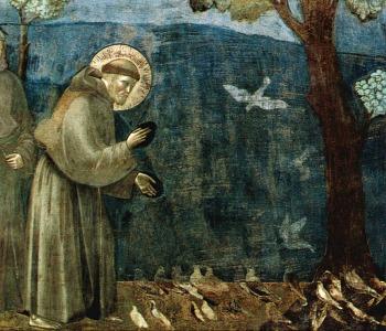 Nuova Enciclica. Card. Turkson: è necessaria una conversione ecologica