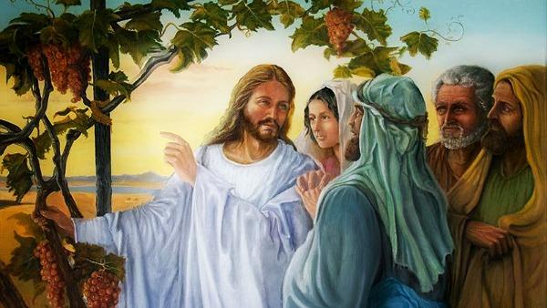 #Vangelo: Chi rimane in me e io in lui porta molto frutto.