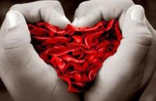 Frosinone, Insieme con Il Cuore: donati oltre 400 confezioni di farmaci