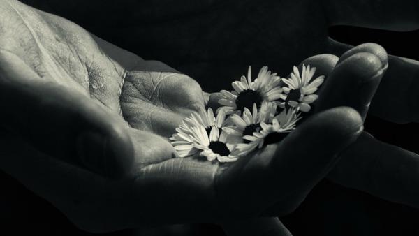 Giovedì 25 giugno - Sono la mia forza, le tue mani