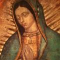 Le 13 figure negli occhi della Madonna di Guadalupe