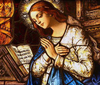 5 punti chiave per conoscere e amare Maria
