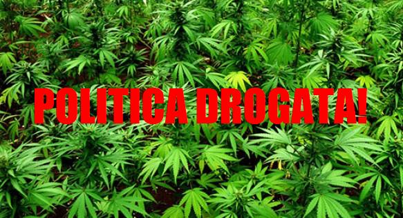 Via-libera-alla-Cannabis-terapeutica-677x316_c