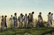 Vangelo (13 Luglio) Gratuitamente avete ricevuto, gratuitamente date
