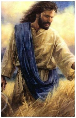 #Vangelo: La messe è abbondante, ma sono pochi gli operai!