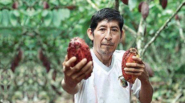 Dalla Coca al Cacao - La Storia di Jorge Laimito
