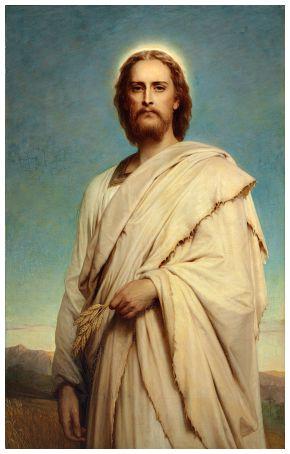 #Vangelo (10 agosto): Se il chicco di grano muore, produce molto frutto.
