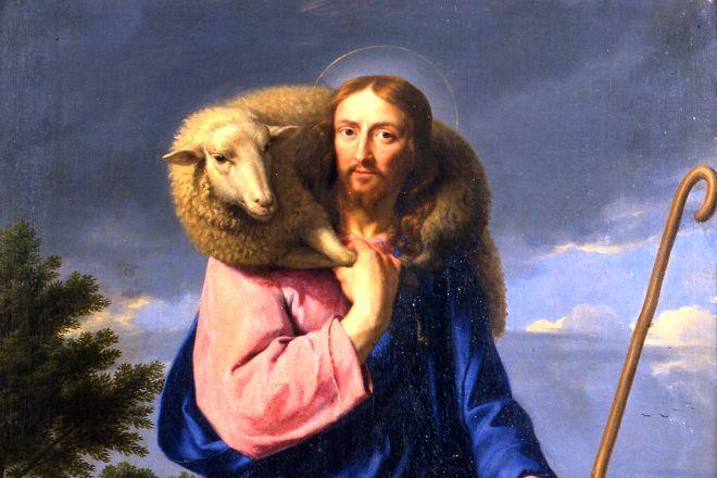 #Vangelo (11 agosto): Se un uomo ha cento pecore e una di loro si smarrisce...