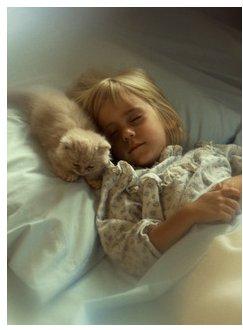 sleeping-child-cat