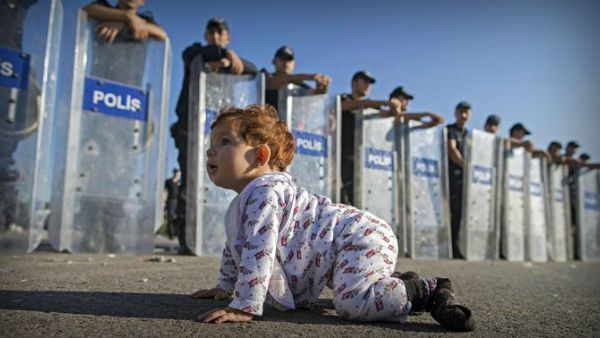 Eh sì!... questa è proprio un'invasione! Baby profuga gattona davanti agli agenti...