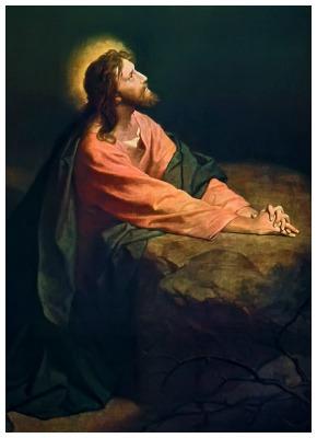 #Vangelo (13 settembre): Tu sei il Cristo… Il Figlio dell'uomo deve molto soffrire.