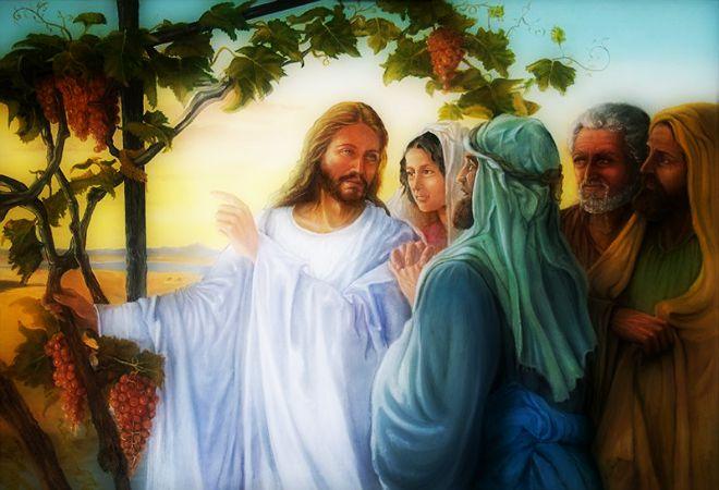 #Vangelo (12 settembre): Ogni albero si riconosce dal suo frutto