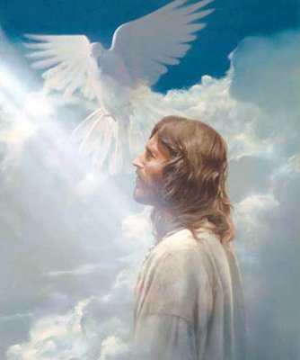 Dove-and-Jesus