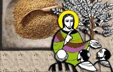 Vangelo (31 Ottobre) Il granello crebbe e divenne un albero