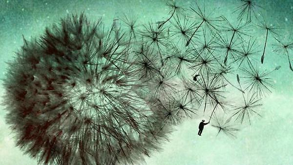 Sabato 14 novembre - Con l'insistenza di chi senza te non può vivere