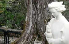Adesso prova a seguire l'Angelo di Fatima: ti porterà sicuramente al Tabernacolo, sull'altare!