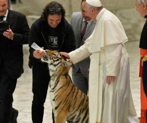 La tigre di Papa Francesco e l'enciclica anche nei gesti