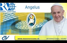 Angelus con Papa Francesco. Domenica 10 Luglio 2016 REPLAY TV