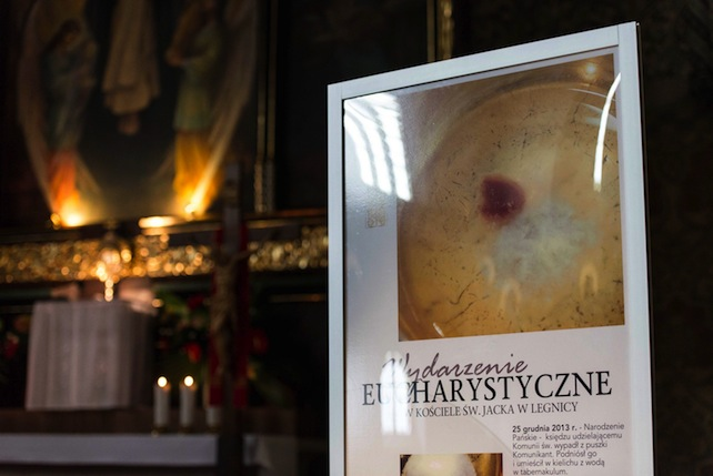 miracolo-eucaristico-polonia-legnica-ansa