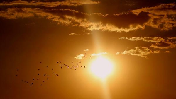 Domenica 18 Settembre - Per amore del cielo