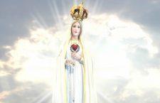 Dobbiamo aiutare la Santa Vergine, con la nostra preghiera continua, a sconfiggere il terrorismo!