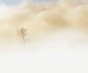 Sabato 15 Ottobre - C'è un legame grande tra te e lo Spirito Santo