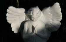 Recitiamo la Coroncina all'Angelo Custode nel corso della notte, perché nel mondo ci sia pace
