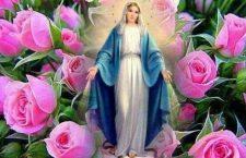 Ogni giorno una Lode a Maria – 22 Maggio – Eterna primavera di perfezione!
