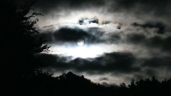 Martedì 11 Aprile - Lontano da Gesù è notte